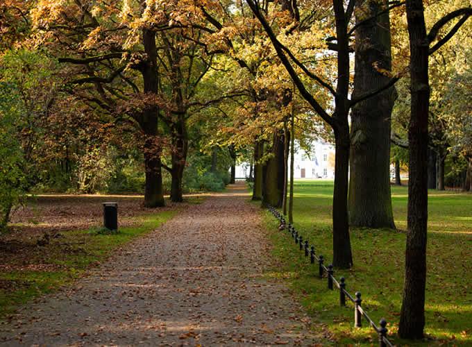 Parque Tiergarten no outono, em Berlim